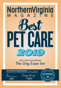 Best Pet Care Badge